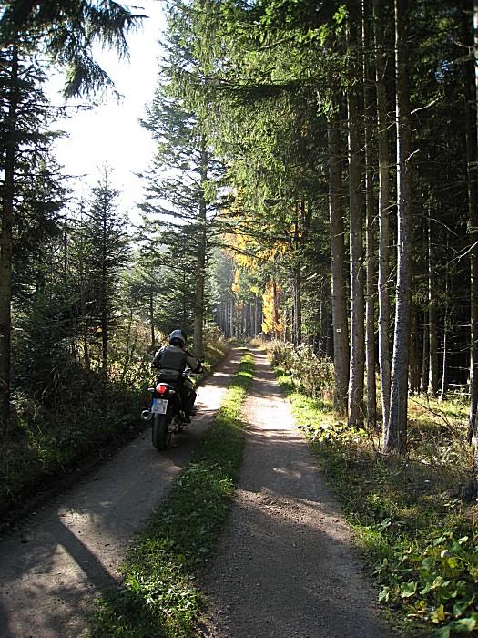 0026-bine-kaesern-elbenschwand.jpg