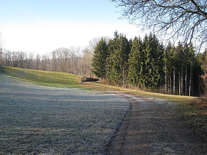 0030-marderweg-kuernberg-fahrnau-.jpg