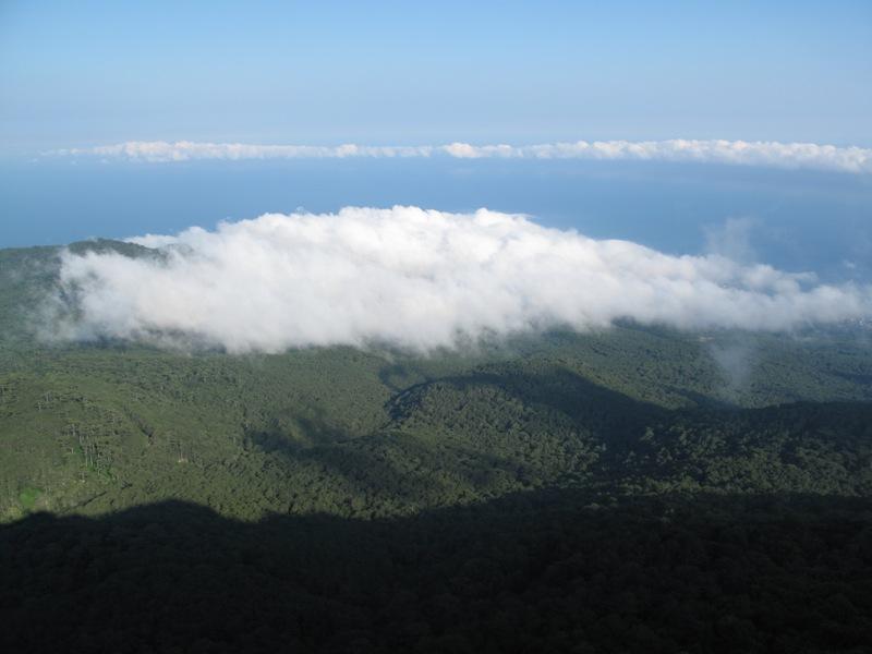 20.-wald-meer-wolken.jpg