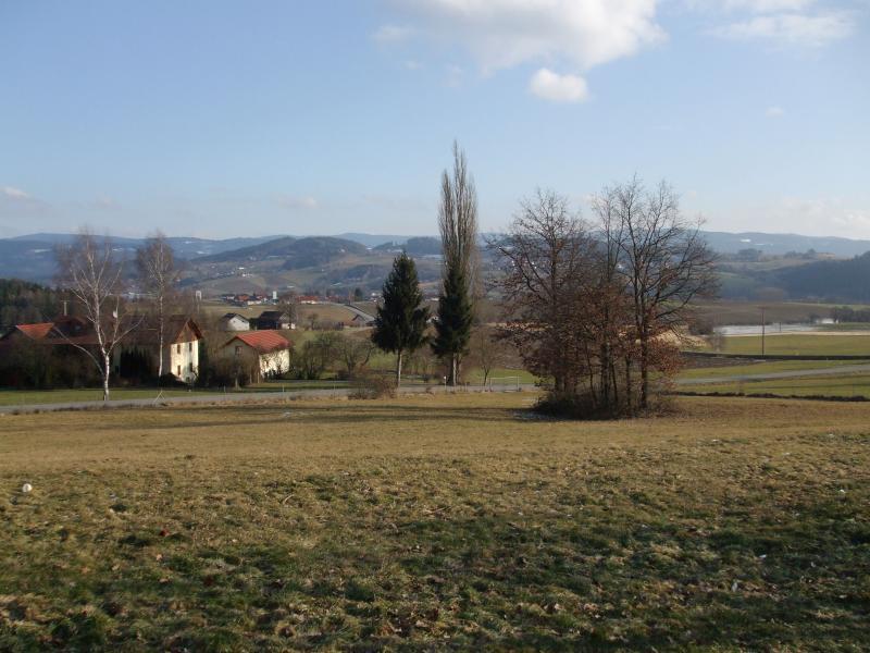 2009-02-01-009.jpg