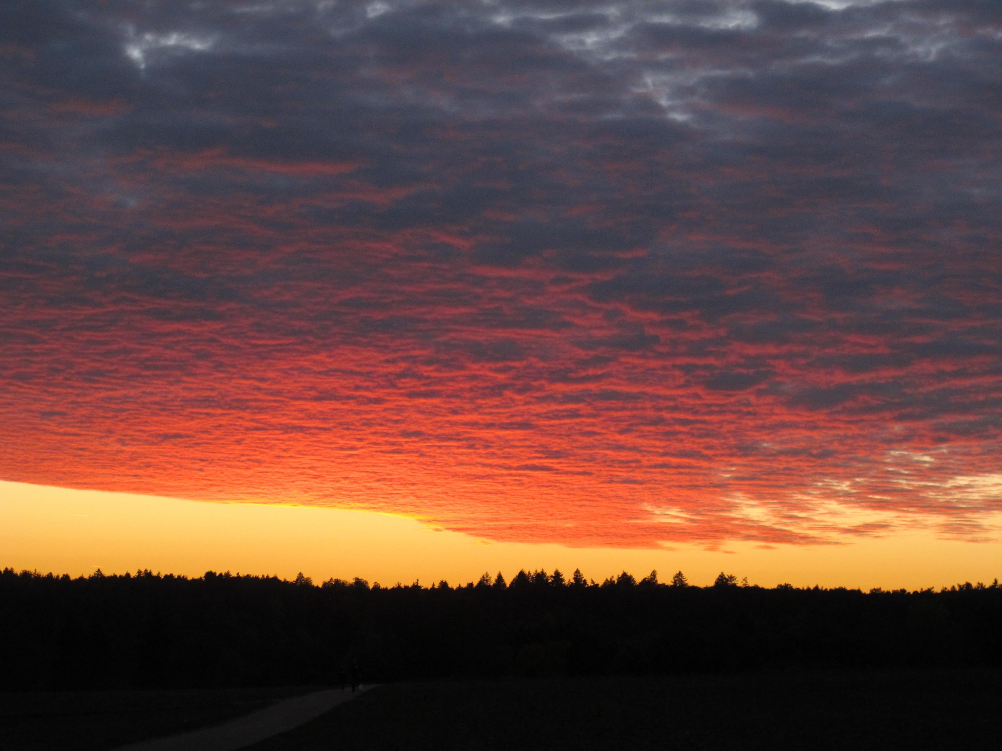 Klicke auf die Grafik für eine größere Ansicht  Name:Abendsonnenbilder 005.jpg Hits:231 Größe:513,8 KB ID:175360