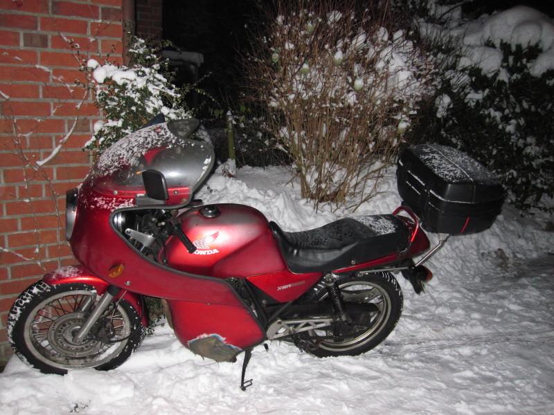 b-rchen-im-winter.jpg