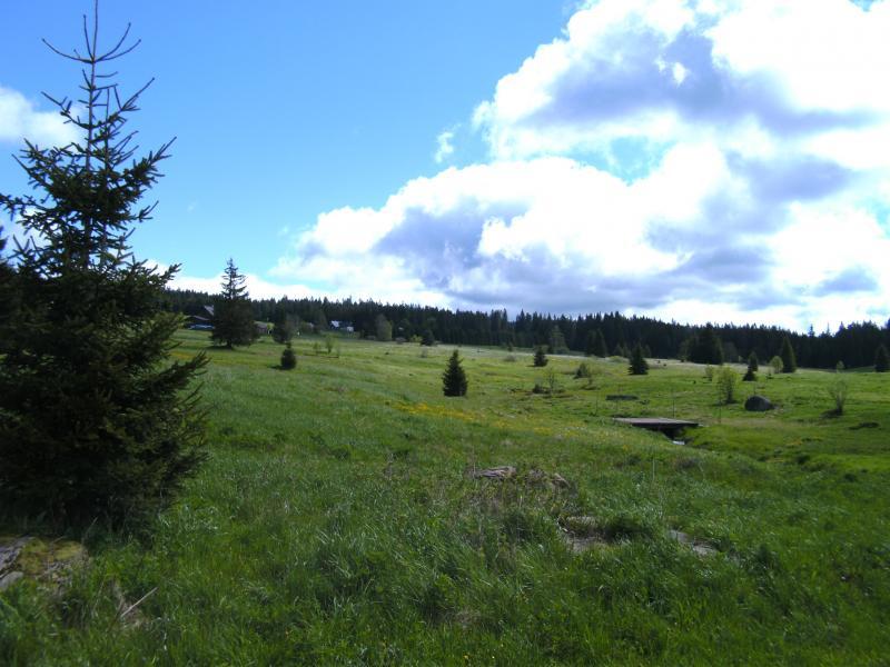Klicke auf die Grafik für eine größere Ansicht  Name:Bayerischer Wald, CZ 20.05.2013 007.jpg Hits:457 Größe:68,4 KB ID:97498