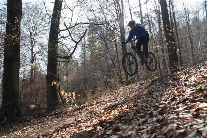 biken4-medium-.jpg