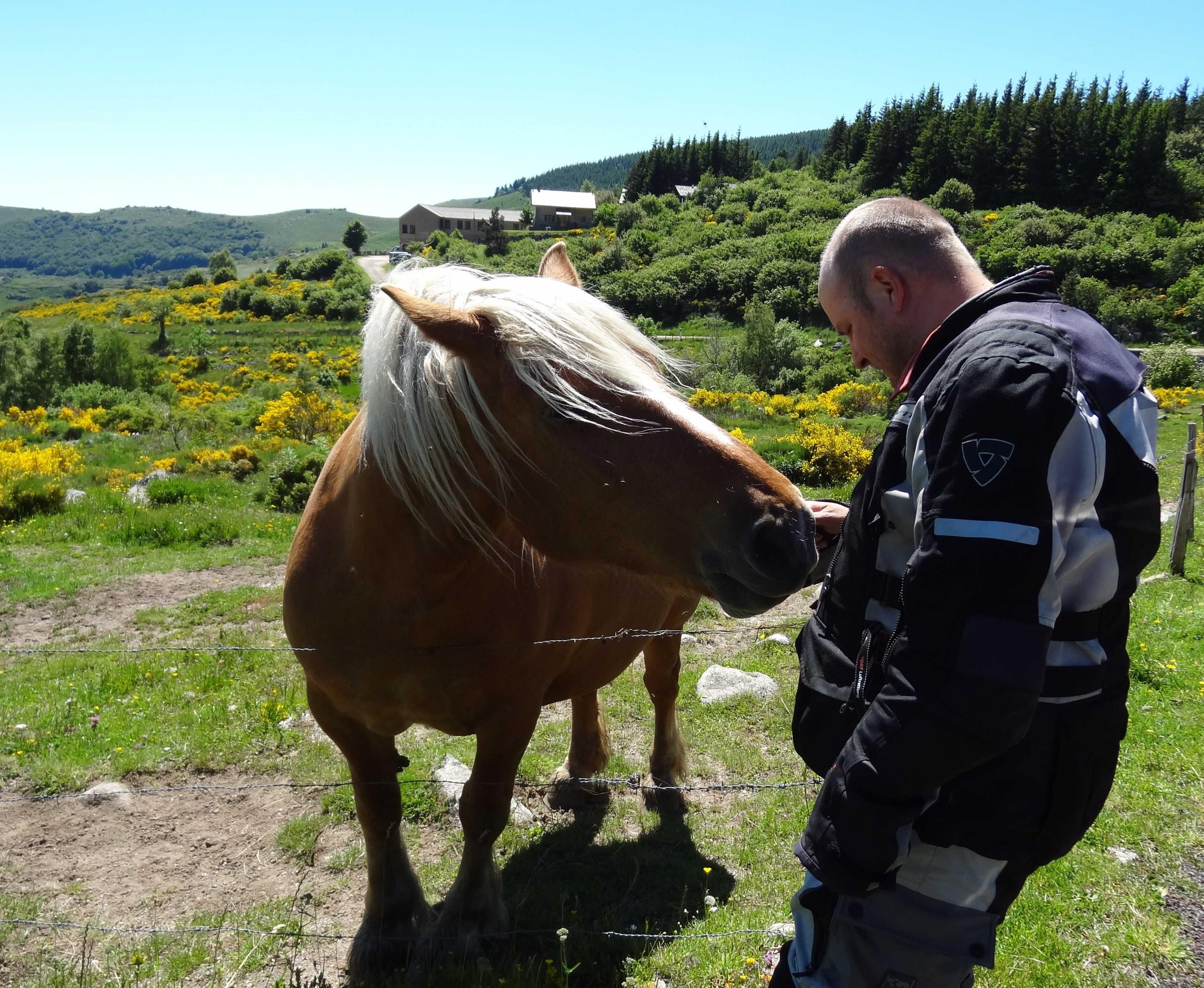 boro-mit-pferd.jpg
