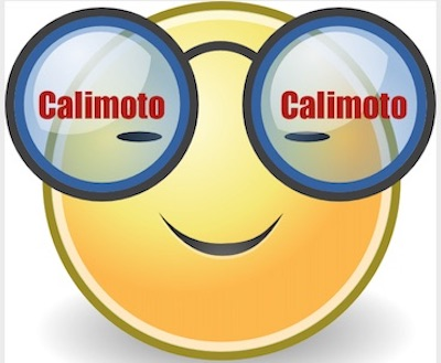 Calimoto Brille.jpg