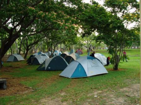 camping_darwin.jpg