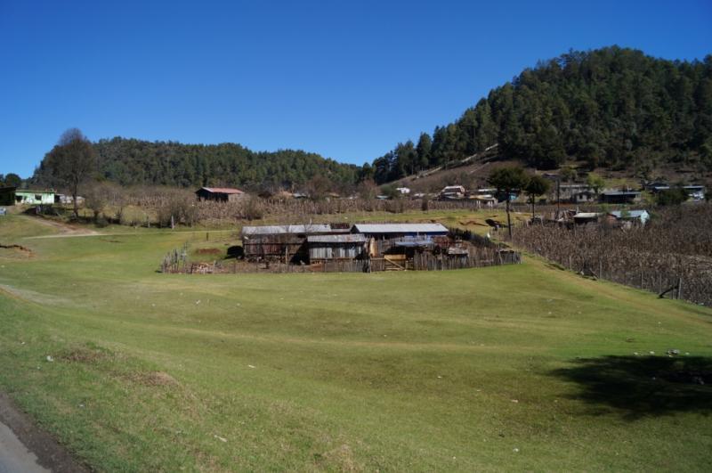 Klicke auf die Grafik f�r eine gr��ere Ansicht  Name:Chiapas 13 (100).jpg Hits:291 Gr��e:55,8 KB ID:89592