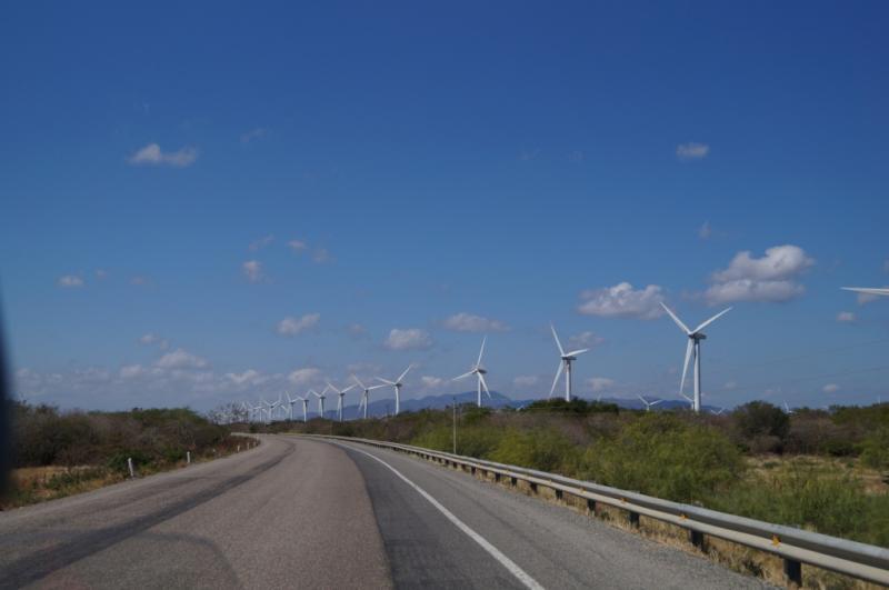 Klicke auf die Grafik f�r eine gr��ere Ansicht  Name:Chiapas 13 (127).jpg Hits:229 Gr��e:30,5 KB ID:89870