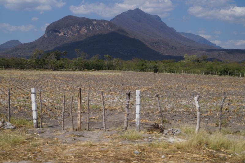 Klicke auf die Grafik f�r eine gr��ere Ansicht  Name:Chiapas 13 (128).jpg Hits:226 Gr��e:63,5 KB ID:89871