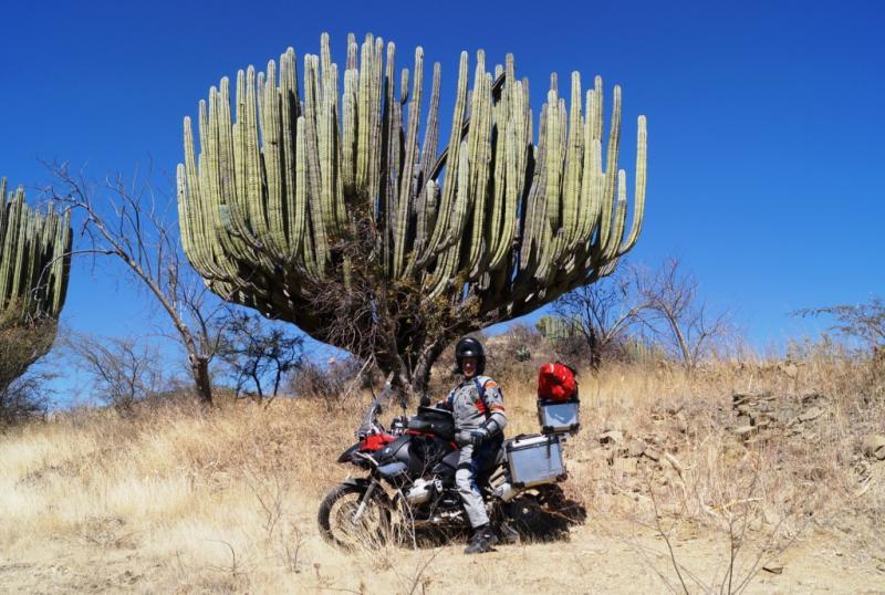 Klicke auf die Grafik f�r eine gr��ere Ansicht  Name:Chiapas 13 (162).jpg Hits:212 Gr��e:85,1 KB ID:89935