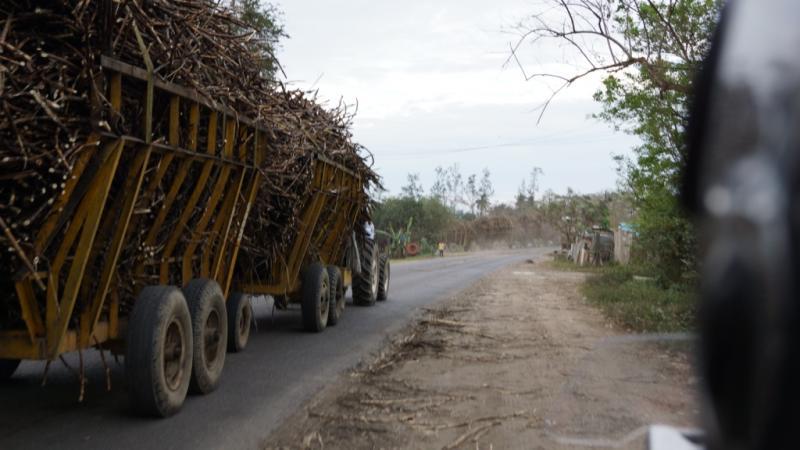 Klicke auf die Grafik für eine größere Ansicht  Name:Chiapas 13 (27).jpg Hits:667 Größe:50,1 KB ID:89147