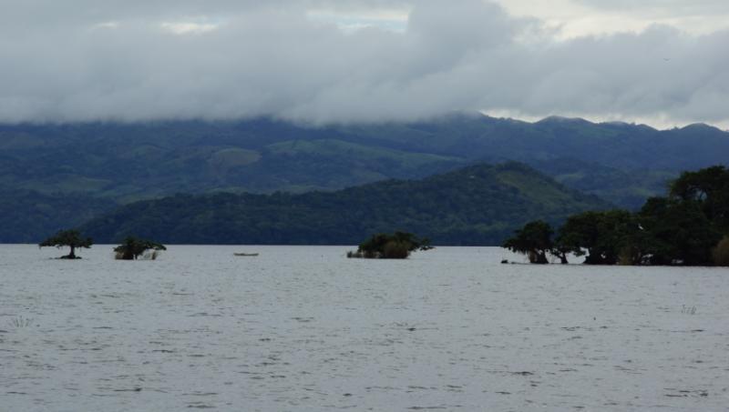 Klicke auf die Grafik für eine größere Ansicht  Name:Chiapas 13 (30).jpg Hits:647 Größe:30,9 KB ID:89150