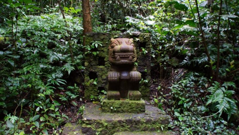 Klicke auf die Grafik für eine größere Ansicht  Name:Chiapas 13 (32).jpg Hits:667 Größe:93,6 KB ID:89151