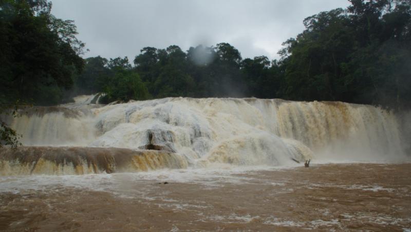 Klicke auf die Grafik für eine größere Ansicht  Name:Chiapas 13 (51).jpg Hits:516 Größe:41,3 KB ID:89283