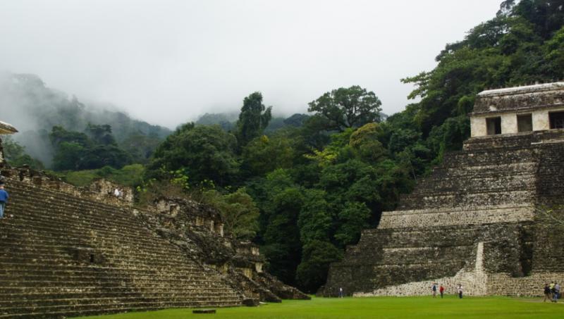 Klicke auf die Grafik für eine größere Ansicht  Name:Chiapas 13 (58).jpg Hits:528 Größe:56,1 KB ID:89288