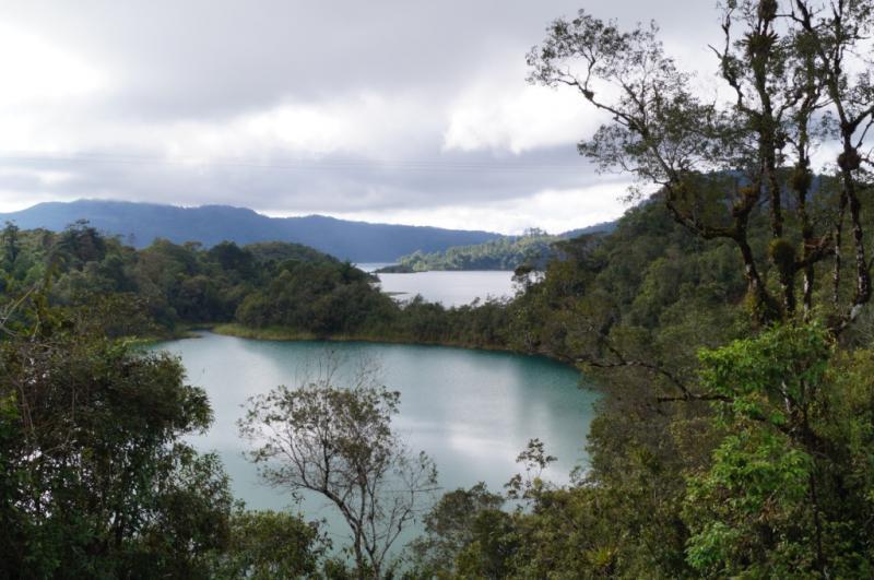 Klicke auf die Grafik f�r eine gr��ere Ansicht  Name:Chiapas 13 (78).jpg Hits:368 Gr��e:70,1 KB ID:89507