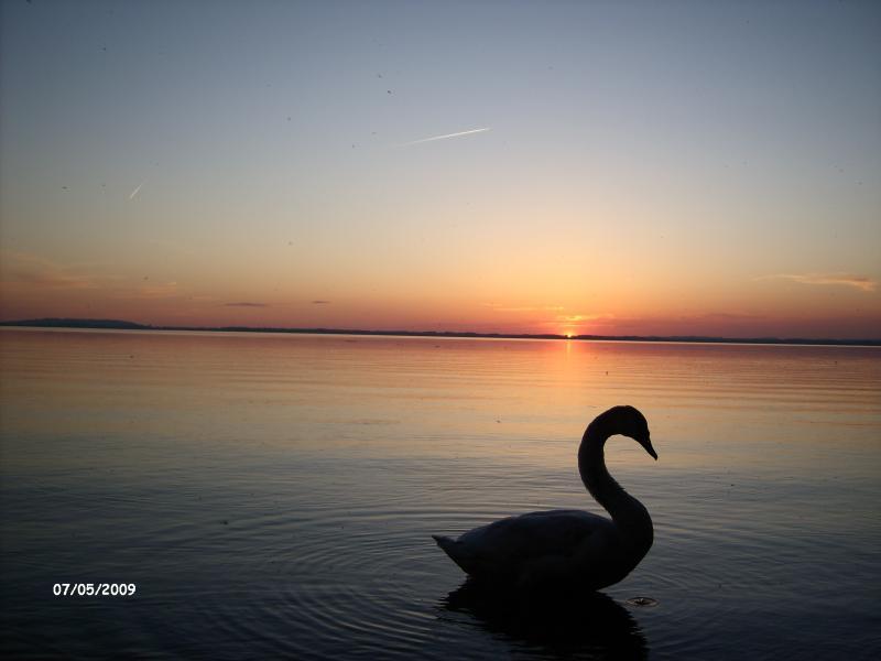 chiemsee-sunset.jpg
