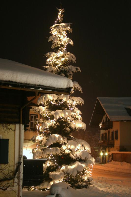 christbaum-017b.jpg