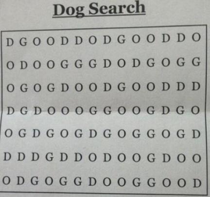 dog search.jpg