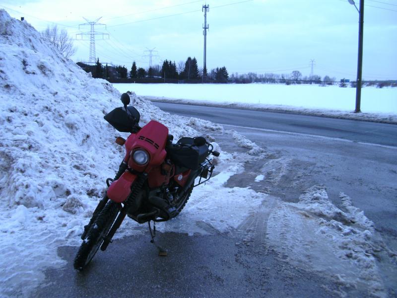 fruehling-16.2.2012-005.jpg
