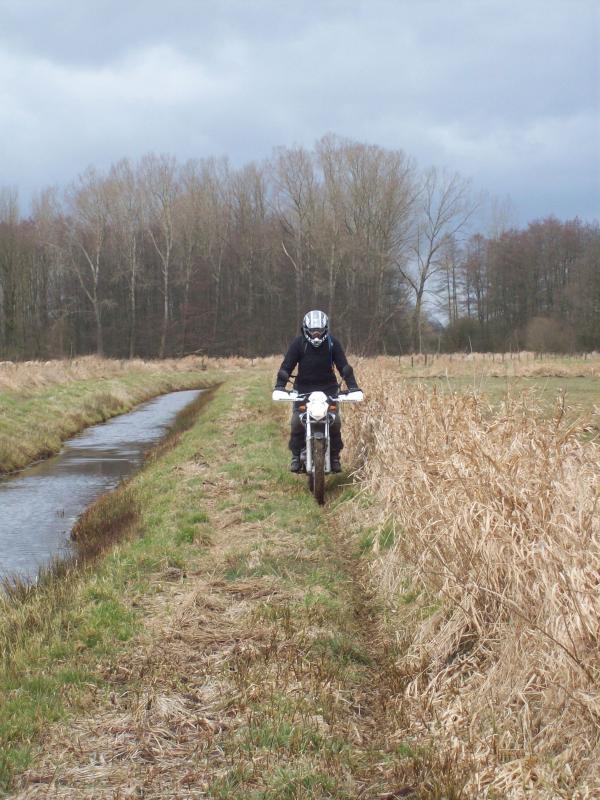 holland-1303_-17-.jpg