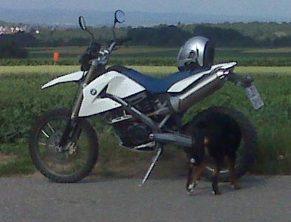hund-xc.jpg