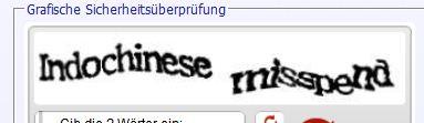 indochinese-misspend.jpg