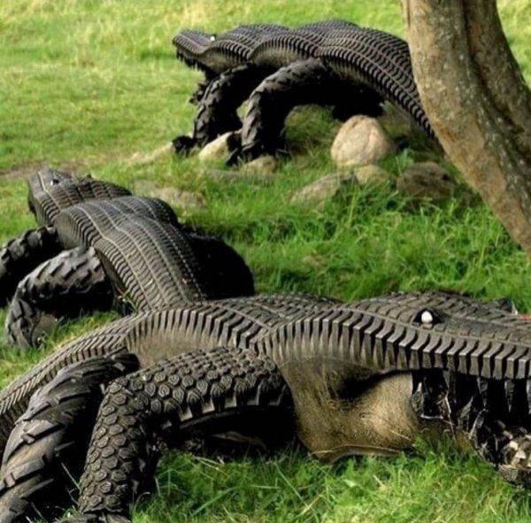 Krokofil.jpeg
