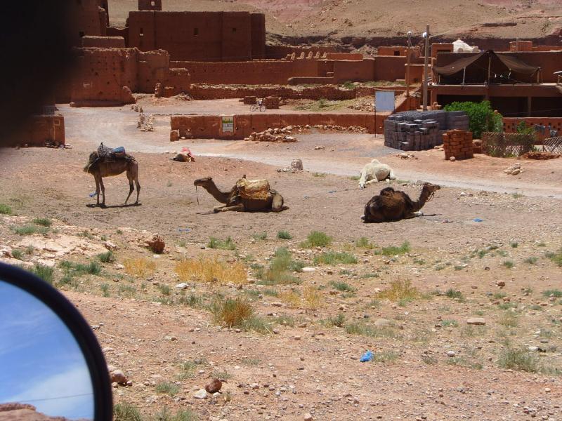 marokko-2010-2-033.jpg