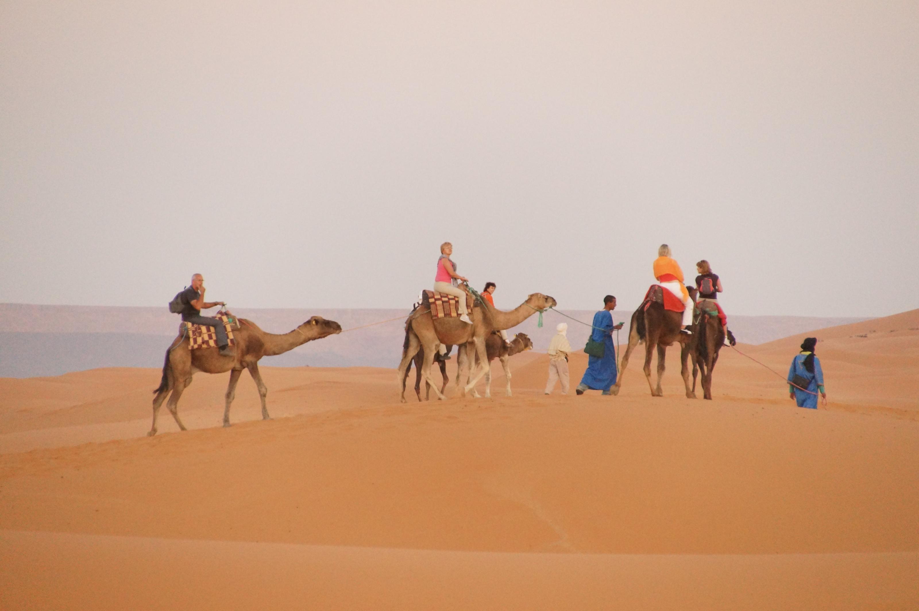 marokko-847.jpg