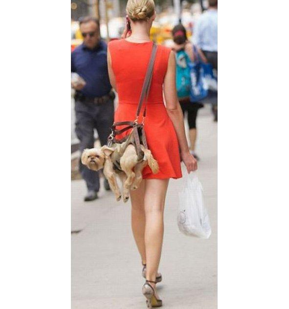 moderne-handtaschen.jpg