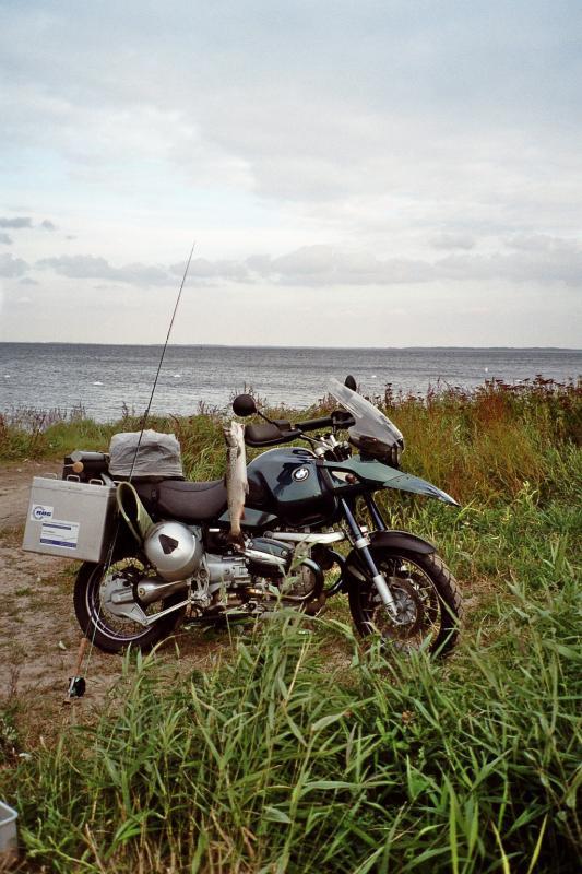 moped-und-mefo.jpg
