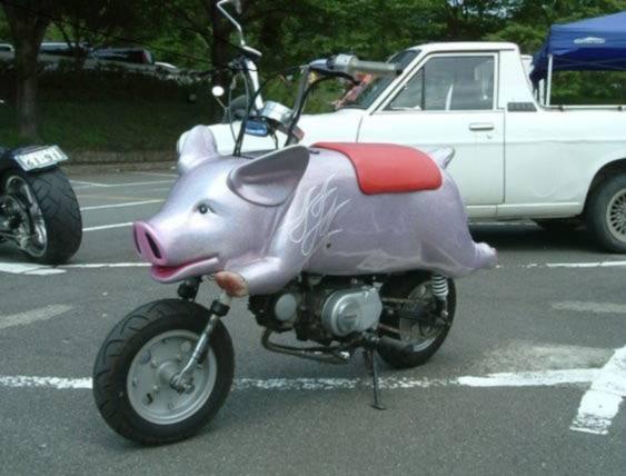 pig_bike.jpg