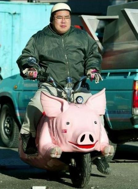 pig_bike2.jpg