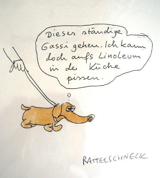 rattelschneck_dsc03207_528_589_2243.jpg