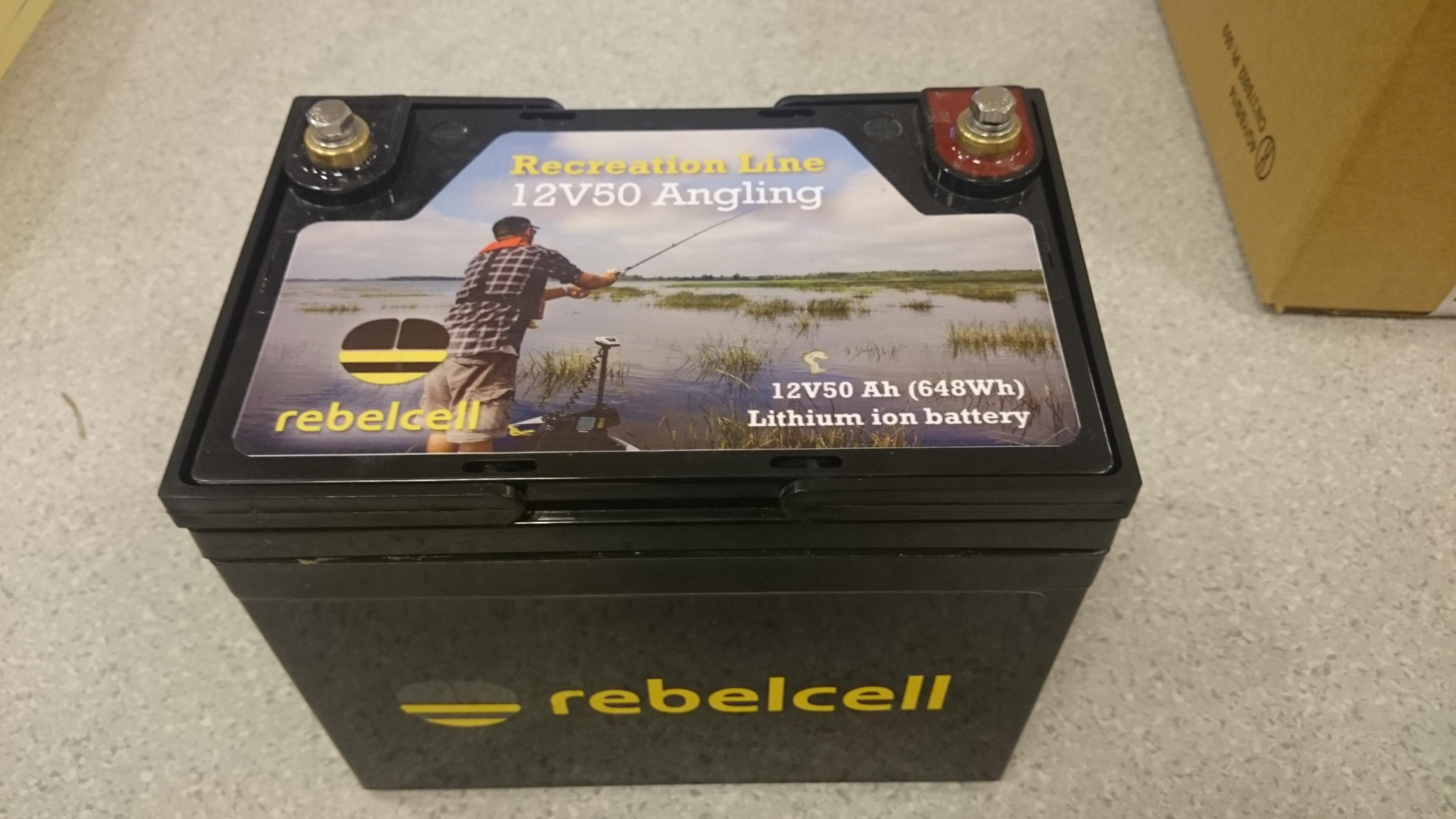 rebelcell_01.jpg