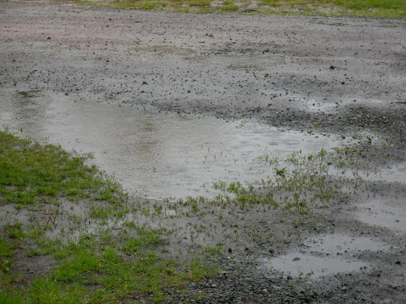 regen-heute.jpg