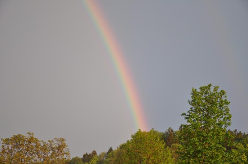 regenbogen-06.05.2012-003.jpg