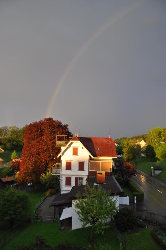 regenbogen-06.05.2012-008.jpg