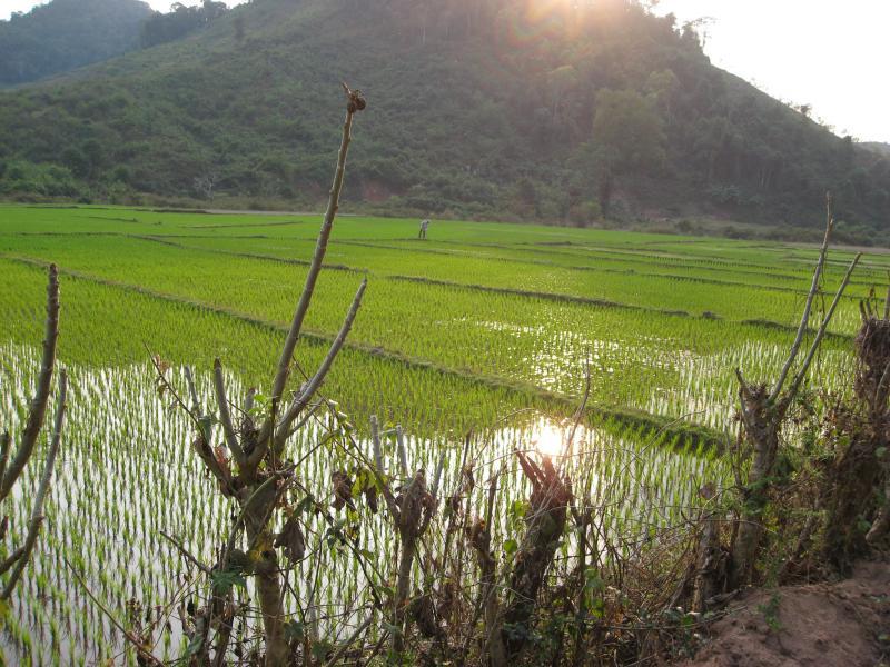 reise-laos-2009-145.jpg