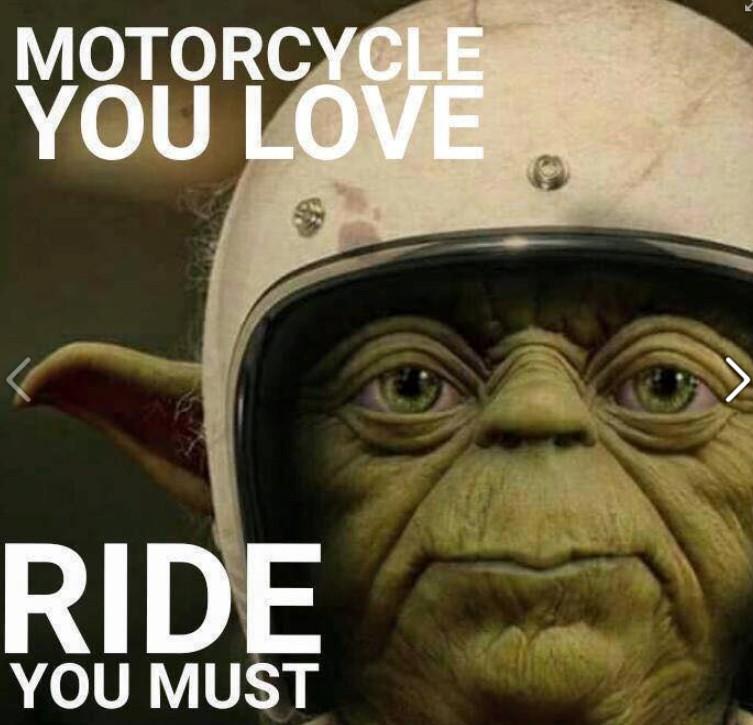 ride-yoda.jpg