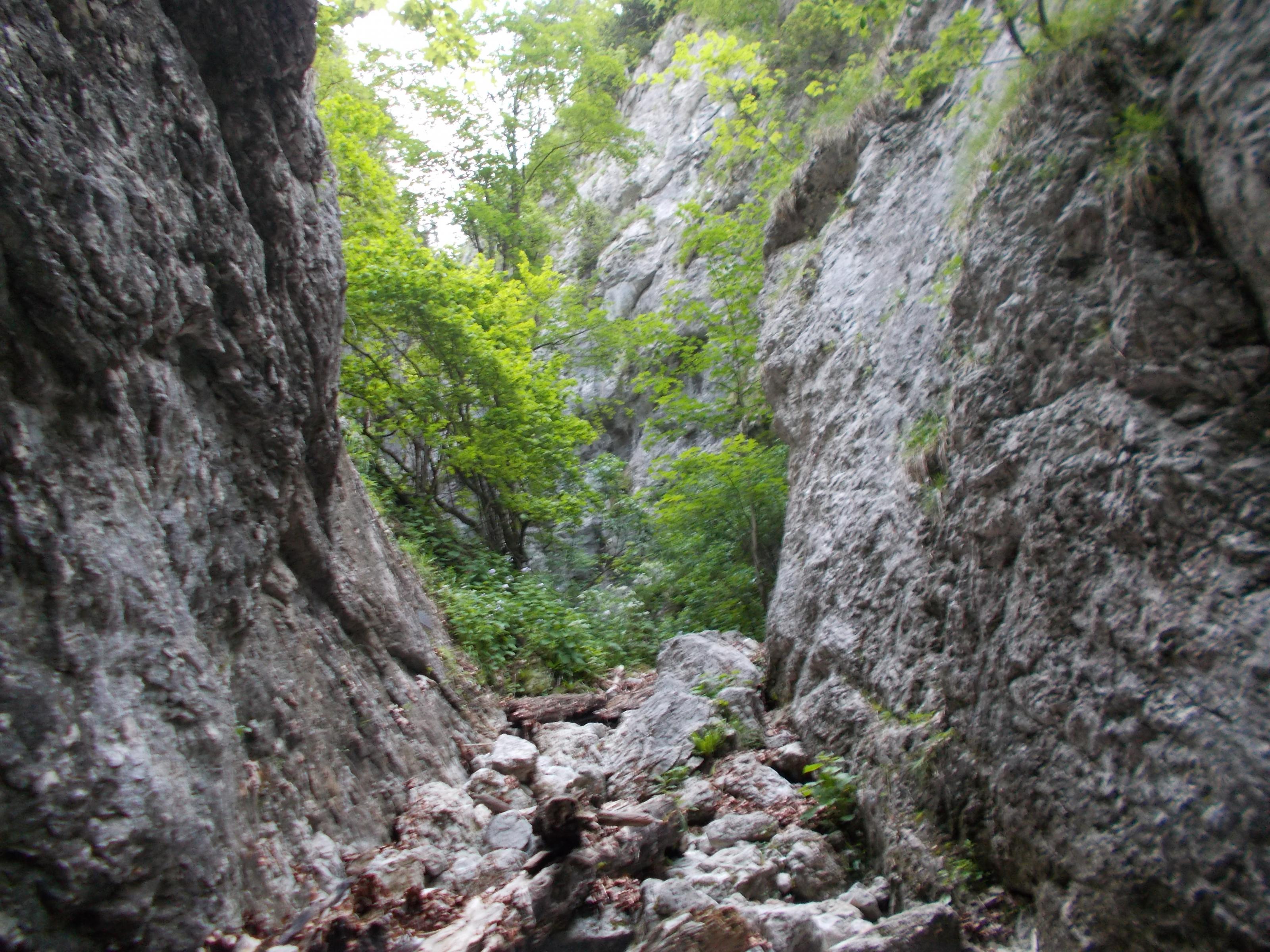schneeberg-weichtalklamm-stadelwand-009.jpg