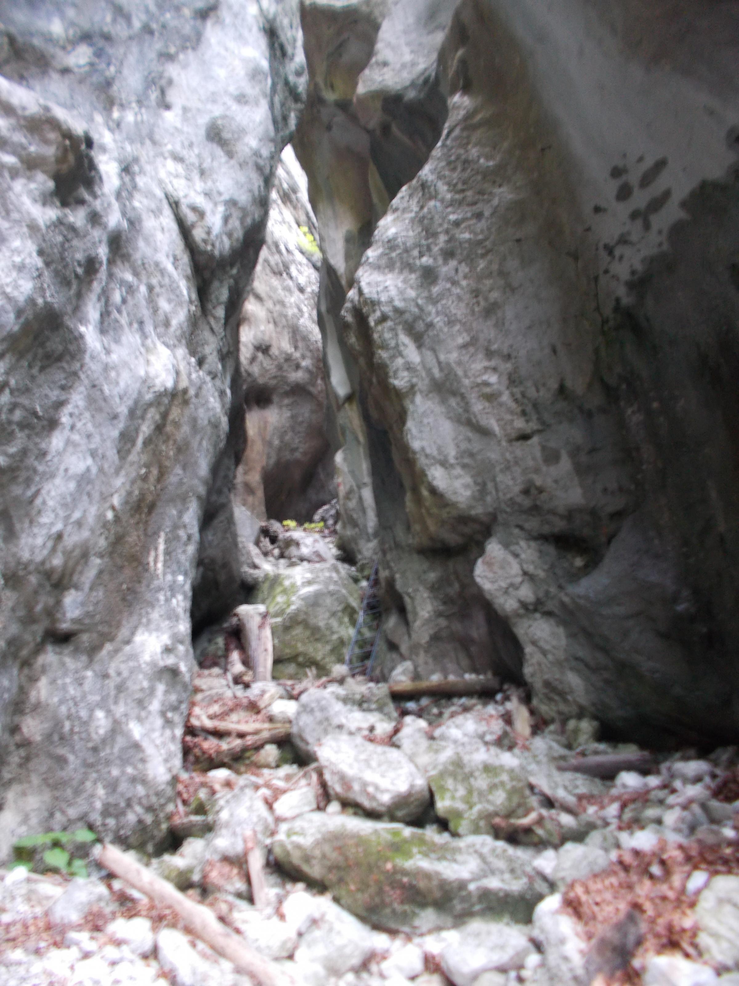 schneeberg-weichtalklamm-stadelwand-012.jpg