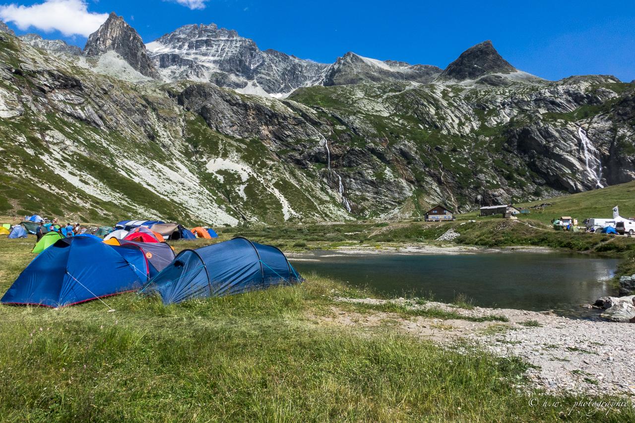 stella-alpina-93-von-165-.jpg