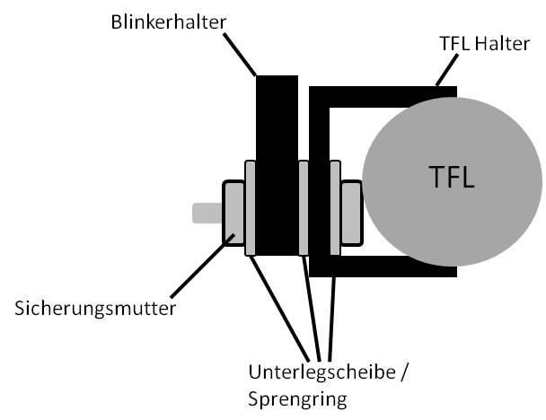 tfl1.jpg