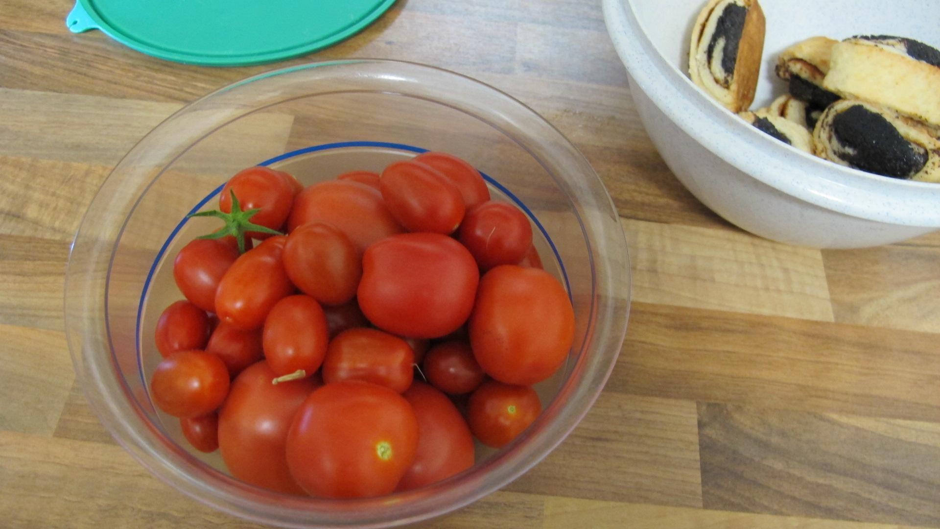 tomaten-005.jpg