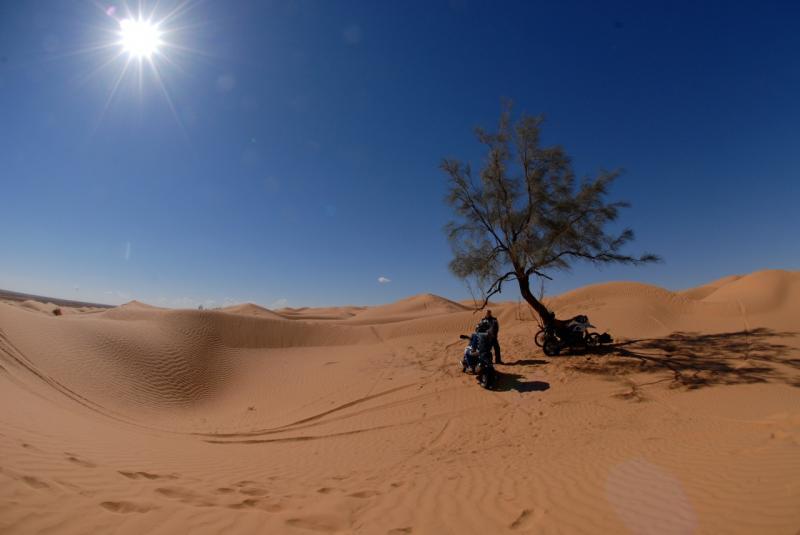 tunesien2.jpg