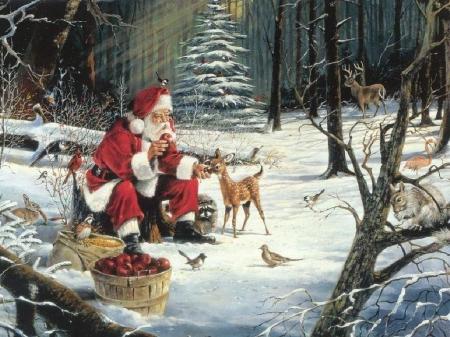 weihnachtsuchbild02.jpg