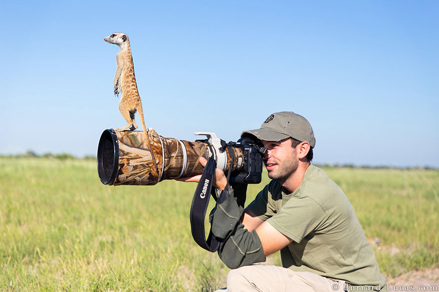 wildlife-photographers-6.jpg